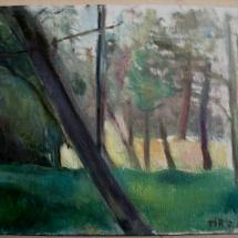 Small grove, 45x32, Oil on canvas