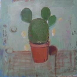 kaktus30X30